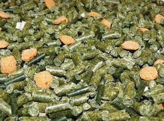 Avicentra MORČE granule 1kg