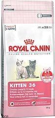 RC cat KITTEN 10kg
