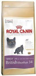 RC cat BRITISH SHORTHAIR 400g