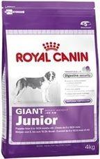 RC GIANT JUNIOR 15kg