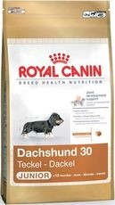 ROYAL CANIN JEZEVČÍK JUNIOR 1,5kg