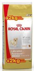 ROYAL CANIN LABRADOR JUNIOR 12+2kg