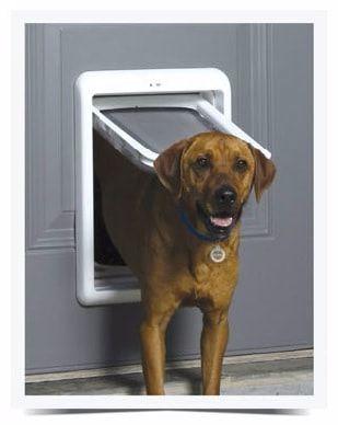 PetSafe dvířka PPA19-20559
