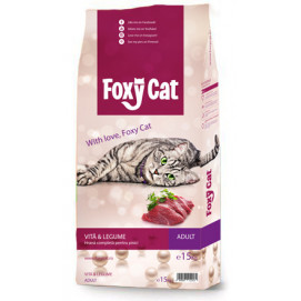 foxy cat