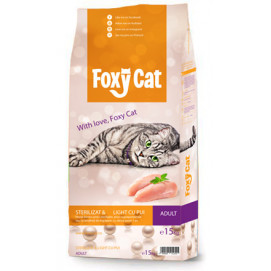 Foxy cat sterilized