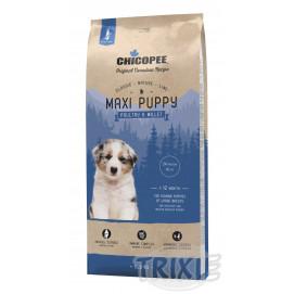 CHICOPEE puppy maxi