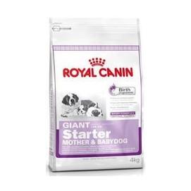 RC GIANT STARTER 15kg