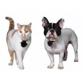 Kamera pro psy a kočky Eyenimal Pet Cam
