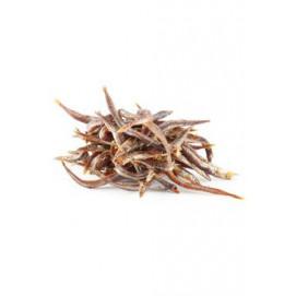 Want Dog poch. NoodleFish 100g