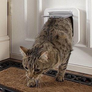 Dvířka pro kočky s mikročipem SureFlap DualScan - hnědá