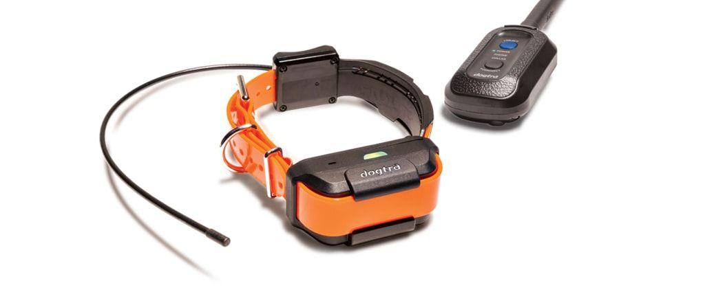 Dogtra Pathfinder - GPS a výcvikový obojek - pro 2 psy