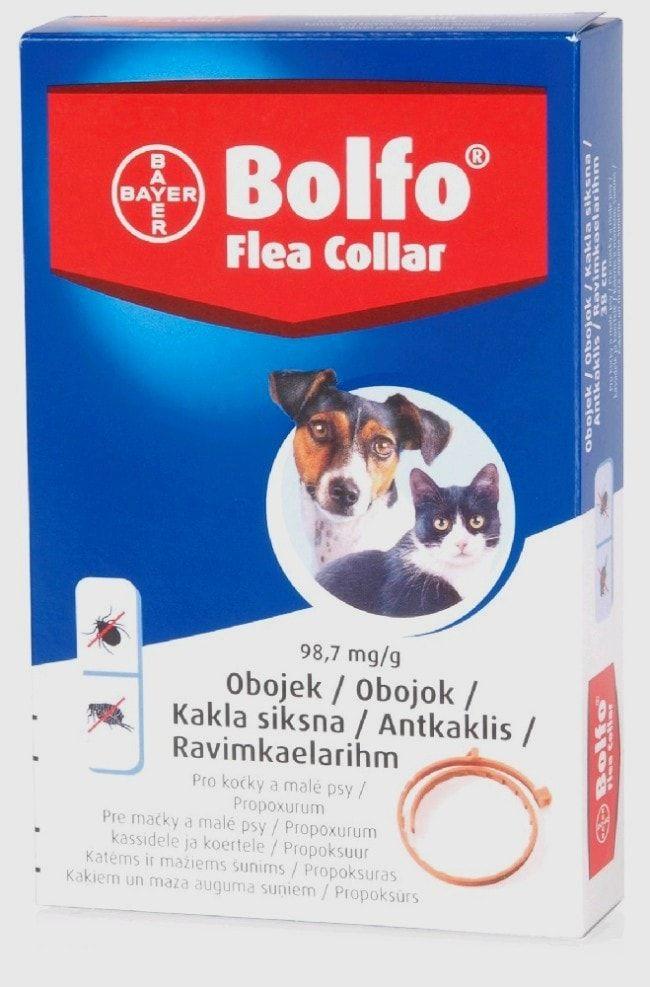 Bolfo anitparazitní obojek pro kočky a malé psy 38