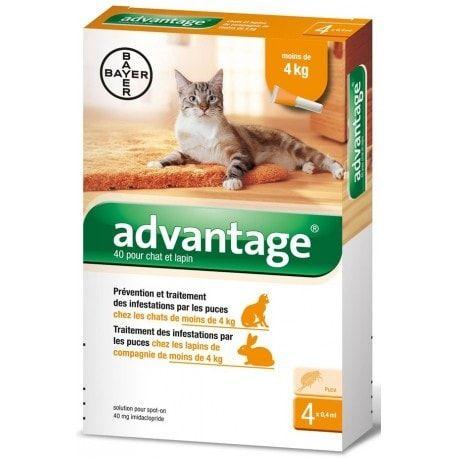 Advantage antiparazitní pipety 40 10% pro kočky do 4kg, 4 x 0,4 ml