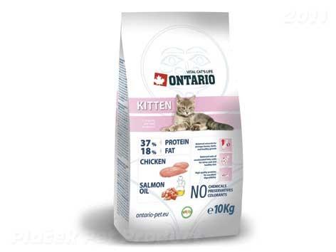 ONTARIO cat KITTEN 2kg