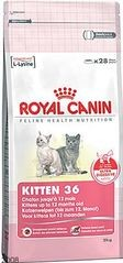 RC cat KITTEN 400g