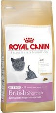 RC cat KITTEN BRITISH shorthair 400g