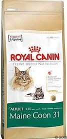 RC cat MAINECOON 2kg