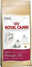 RC cat PERSIAN 4kg