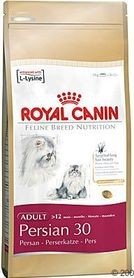 RC cat PERSIAN 10kg