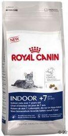 RC cat INDOOR + 7 1,5kg