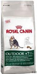RC cat OUTDOOR + 7 2kg