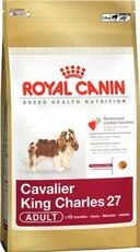 ROYAL CANIN KAVALÍR 500g