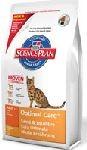 Hills cat ADULT/chicken 10kg