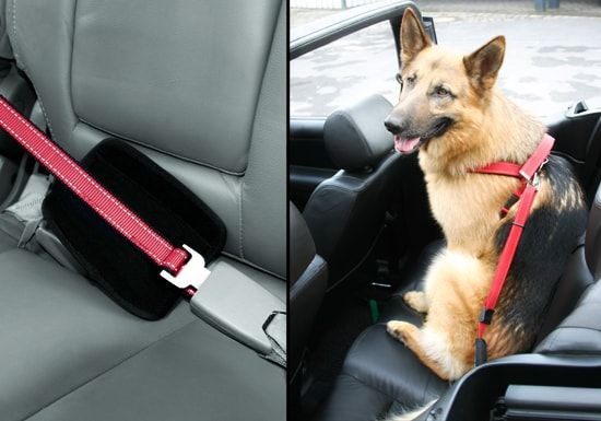 Walk and Drive - pás pro psy do auta s vodítkem